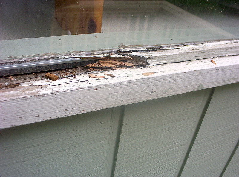 Image result for rotting window sill